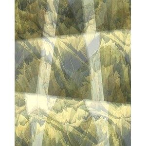 Kowalski Antoni, Medytacja lotos I/III, 2004