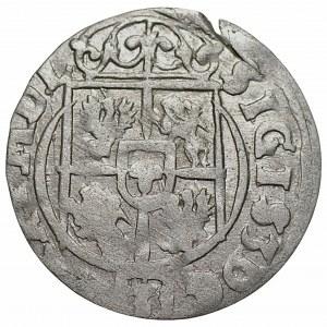Zygmunt III Waza (1587-1632) - Półtorak 1623 - Bydgoszcz - Sas w tarczy ozdobnej - Kolekcja Górecki