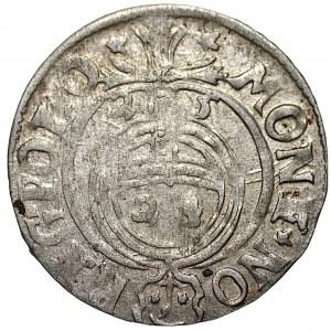 Zygmunt III Waza (1587-1632) - Półtorak 1625 Sas w ozdobnej tarczy - Bydgoszcz - Kolekcja Górecki