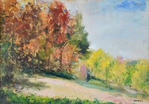 Irena WEISS – ANERI (1888-1981), Pejzaż jesienny II - Kalwaria, 1970