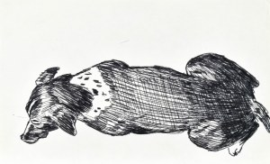 Ludwik MACIĄG (1920-2007), Siedzący pies w ujęciu z tyłu