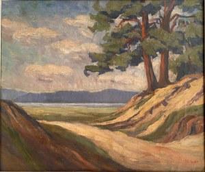 Nieustalony malarz, ''Pejzaż leśny z jeziorem''