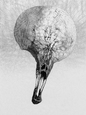 Zdzisław Beksiński - Balon Nevermore - rysunek modyfikowany komputerowo (2000-2004r.)