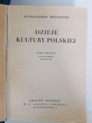 Bruckner Aleksander DZIEJE KULTURY POLSKIEJ