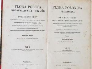 Waga Jakób FLORA POLSKA 1848