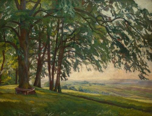 Stanisław Kamocki (1875 Warszawa - 1944 Zakopane), Pod słońce