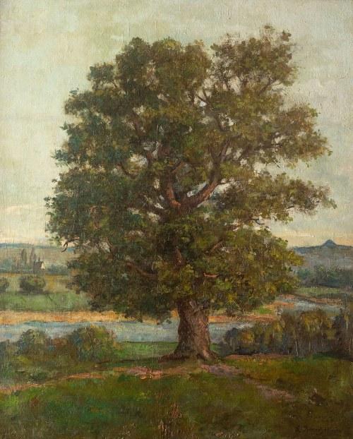 Ludomir Benedyktowicz (1844 Świniary-1926 Lwów), Drzewo w małopolskim pejzażu