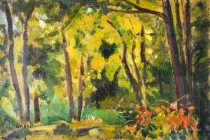 Irena WEISS – ANERI (1888-1981), Pejzaż