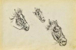 Tadeusz RYBKOWSKI (1848-1926), Szkice głów końskich