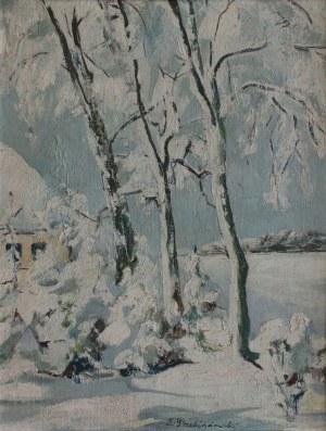 Zdzisław Przebindowski, Pejzaż zimowy