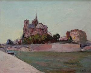 Włodzimierz Terlikowski, Widok na Ile de la Cité w Paryżu