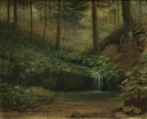 Feliks K. Wygrzywalski(1903-1966),Strumyk w lesie