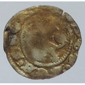 Jan Lucemburský 1310-1346, parvus, Castelin 13-16