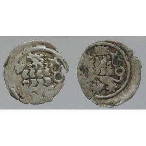 Mezivládí 1439-1453, peníz se lvem s trojřadou hřívou