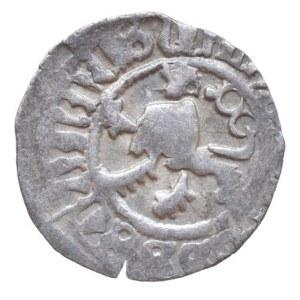 Vladislav Jagellonský 1471-1516, bílý peníz, jednostranný