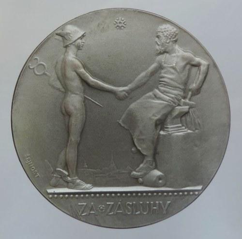 Medaile dle autorů, Šejnost, J., AE 50mm postříbřený bronz, Obchodní a živnostenská komora v Plzni 1924