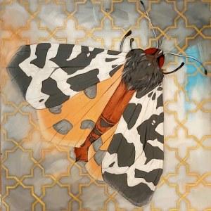Sylwia Wenska, Entomofobia-Motyl nocny, 2020