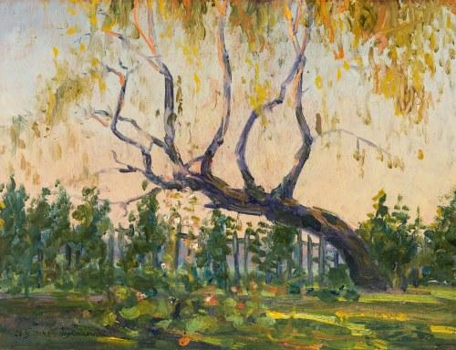 Oleksa Nowakiwskij (1872 Obodiuka - 1932 Lwów), Pejzaż z drzewem, 1913 r.