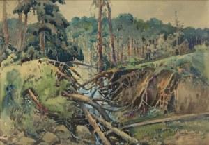 Stanisław Gibiński (1882 Rzeszów – 1971 Katowice), Pejzaż leśny, 1923 r.