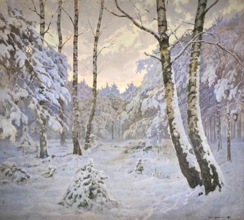 Józef RAPACKI (1871-1929), Pejzaż zimowy, 1915