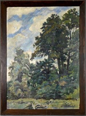 Mieczysław FILIPKIEWICZ (1891-1951), Pejzaż z drzewami