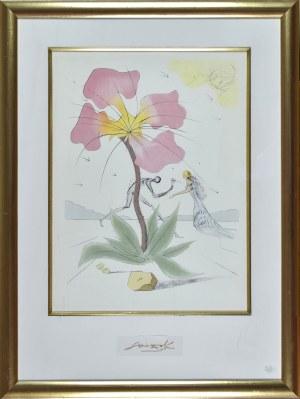 Salvador DALI (1904-1989), Kompozycja z kwiatem