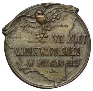 VII Zlot Sokolstwa Polskiego, Poznań 1929