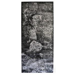 Iwona Cur (ur. 1978), Ptaki, 2013