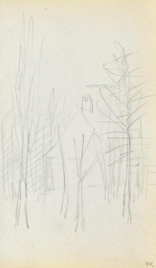 Jacek MALCZEWSKI (1854-1929), Bezlistne drzewa w ogrodzie przydomowym