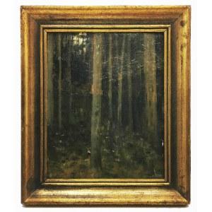 Leonard STROYNOWSKI (1858-1935), Wnętrze lasu