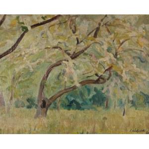 Jan WODYŃSKI (1903-1988), Pejzaż z drzewami