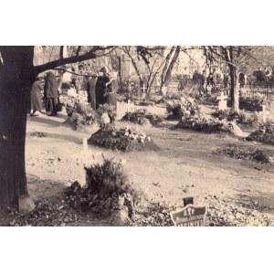 Sylwester Braun - Plac Trzech Krzyży, 1940. Vintage print, autorski stempel na rewersie, 8...