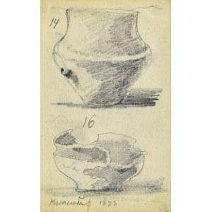 Tadeusz RYBKOWSKI (1848-1926), Dwa dzbany z wykopalisk w Kwaczale