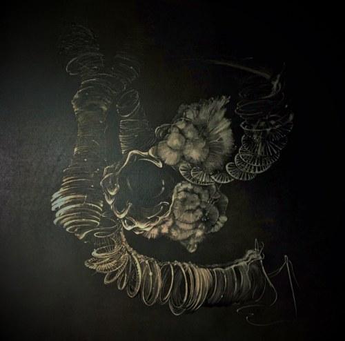 Joanna Haluch, Kruchość DNA