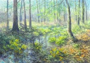 Małgorzata Rawicka, Leśne kaczeńce