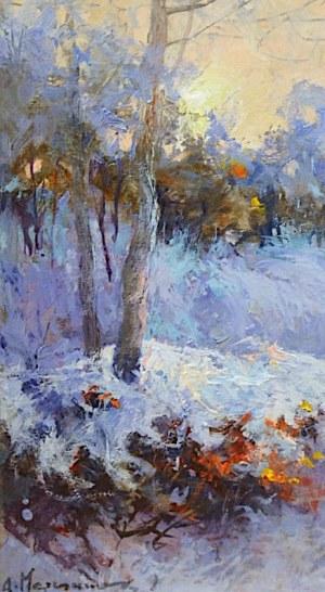 Anatol Martyniuk, Zima