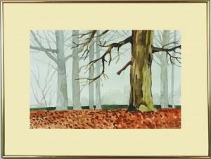 Jarosław Filipek, Stare drzewa we mgle