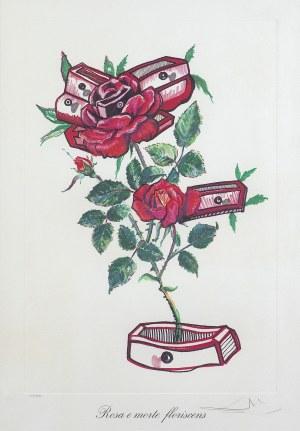 Dali Salvador, ROSA E MORTE FLORISCENS, 1972