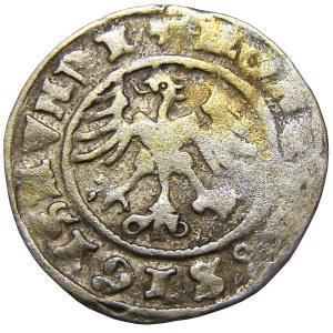 Zygmunt I Stary, półgrosz 1500 - błędnie wybita data, Kraków