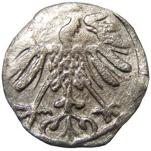 Zygmunt II August, denar 1550?, Wilno