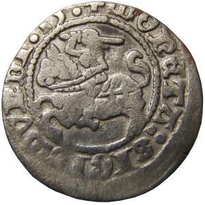 Zygmunt I Stary, półgrosz 1513, Wilno, skrócona data