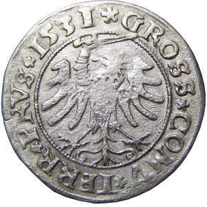 Zygmunt I Stary, grosz 1531, Toruń, popiersie w koronie, PRVS/PRVS