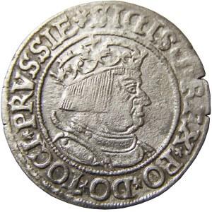Zygmunt I Stary, grosz 1534, Toruń, rzadszy typ popiersia