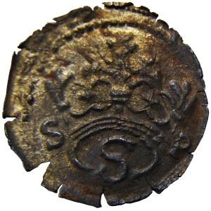 Zygmunt I Stary, denar bez daty, litera S w monogramie, Kraków