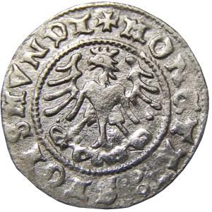 Zygmunt I Stary, półgrosz 1509, Kraków, Piękny