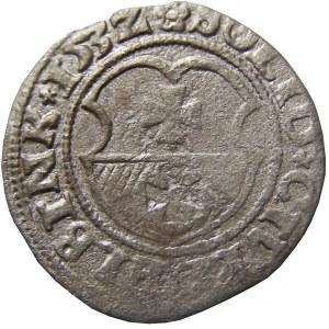 Zygmunt I Stary, szeląg 1532 PRVSS, Elbląg