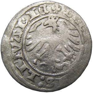 Zygmunt I Stary, półgrosz litewski 1514, Wilno