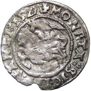 Zygmunt I Stary, półgrosz 1527, Wilno, RRR