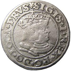 Zygmunt I Stary, grosz pruski 1530 PRVS/PRVS, Toruń