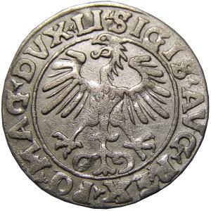 Zygmunt II August, półgrosz 1555, Wilno, przebitka